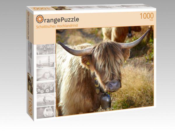 """Puzzle Motiv """"Schottisches Hochlandrind"""" - Puzzle-Schachtel zu 1000 Teile Puzzle"""
