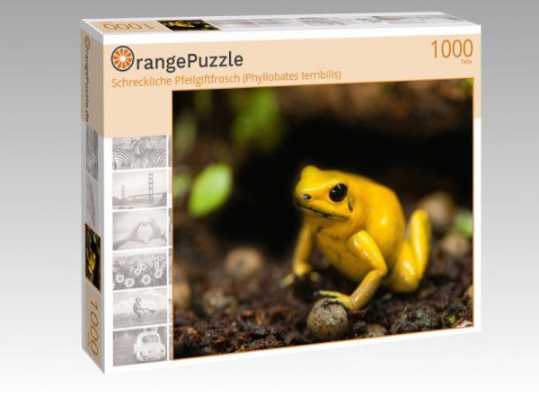 """Puzzle Motiv """"Schreckliche Pfeilgiftfrosch (Phyllobates terribilis)"""" - Puzzle-Schachtel zu 1000 Teile Puzzle"""