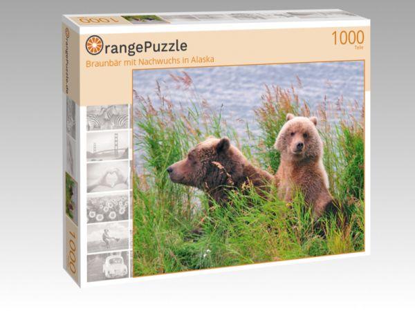 """Puzzle Motiv """"Braunbär mit Nachwuchs in Alaska"""" - Puzzle-Schachtel zu 1000 Teile Puzzle"""