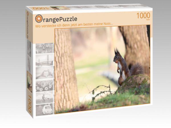 """Puzzle Motiv """"Wo verstecke ich denn jetzt am besten meine Nuss..."""" - Puzzle-Schachtel zu 1000 Teile Puzzle"""