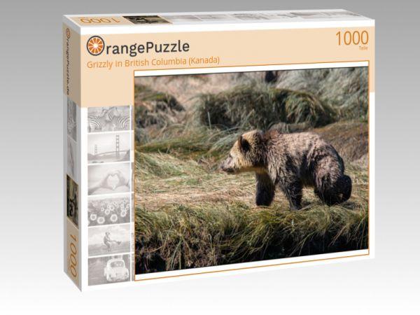 "Puzzle Motiv ""Grizzly in British Columbia (Kanada)"" - Puzzle-Schachtel zu 1000 Teile Puzzle"