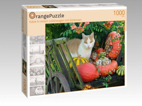 """Puzzle Motiv """"Katze in einem Leiterwagen mit Kürbissen"""" - Puzzle-Schachtel zu 1000 Teile Puzzle"""