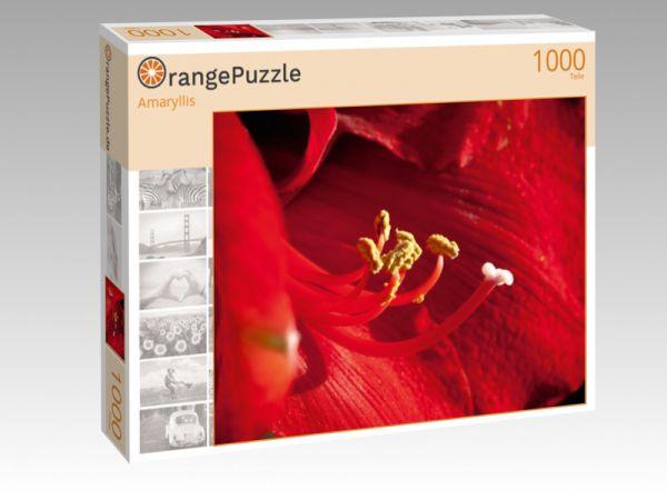 """Puzzle Motiv """"Amaryllis"""" - Puzzle-Schachtel zu 1000 Teile Puzzle"""