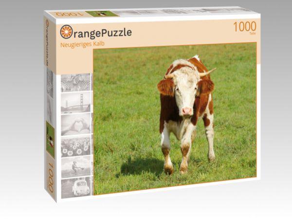 """Puzzle Motiv """"Neugieriges Kalb"""" - Puzzle-Schachtel zu 1000 Teile Puzzle"""