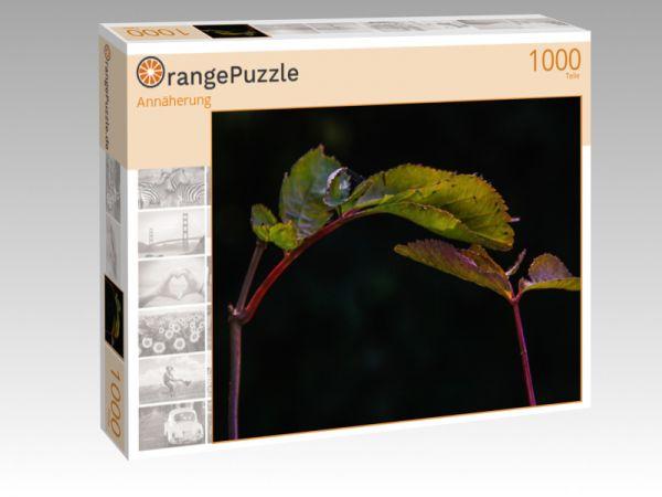"Puzzle Motiv ""Annäherung"" - Puzzle-Schachtel zu 1000 Teile Puzzle"