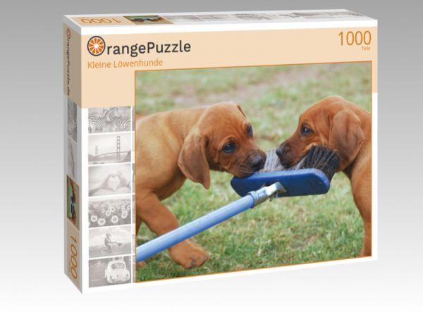 """Puzzle Motiv """"Kleine Löwenhunde"""" - Puzzle-Schachtel zu 1000 Teile Puzzle"""