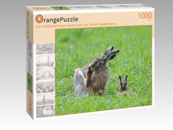 """Puzzle Motiv """"Der Feldhasenmann putzt sich vor seiner Hasendame."""" - Puzzle-Schachtel zu 1000 Teile Puzzle"""