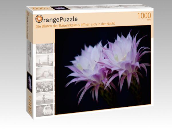 """Puzzle Motiv """"Die Blüten des Bauernkaktus öffnen sich in der Nacht"""" - Puzzle-Schachtel zu 1000 Teile Puzzle"""