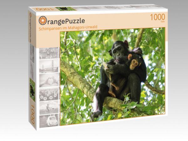 """Puzzle Motiv """"Schimpansen im Mahagoni-Urwald"""" - Puzzle-Schachtel zu 1000 Teile Puzzle"""