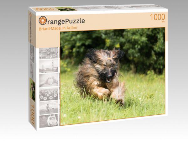 "Puzzle Motiv ""Briard-Mädel in Action"" - Puzzle-Schachtel zu 1000 Teile Puzzle"