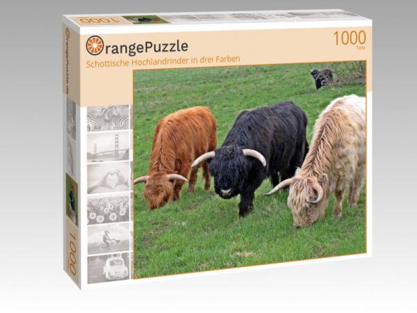 """Puzzle Motiv """"Schottische Hochlandrinder in drei Farben"""" - Puzzle-Schachtel zu 1000 Teile Puzzle"""
