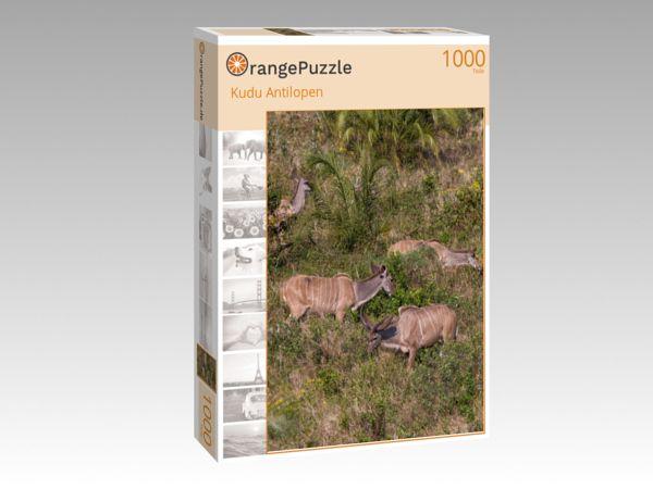 """Puzzle Motiv """"Kudu Antilopen"""" - Puzzle-Schachtel zu 1000 Teile Puzzle"""