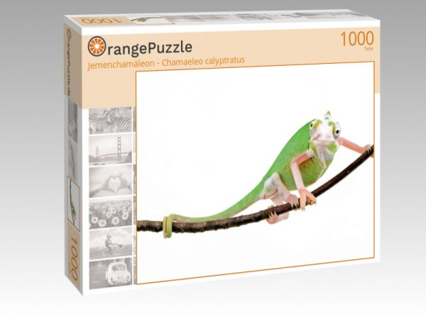 "Puzzle Motiv ""Jemenchamäleon - Chamaeleo calyptratus"" - Puzzle-Schachtel zu 1000 Teile Puzzle"