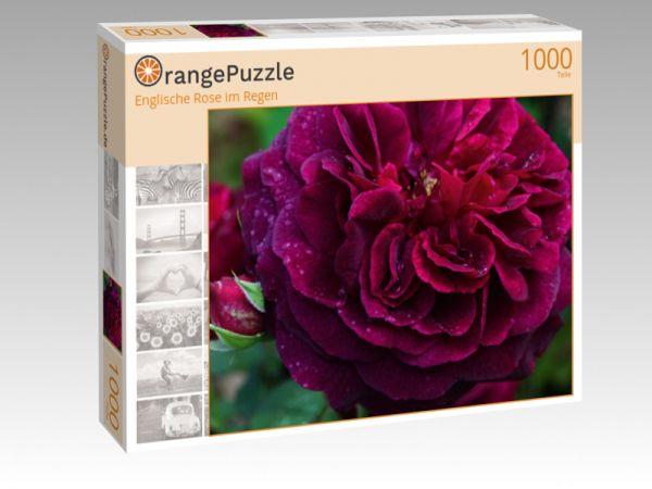 """Puzzle Motiv """"Englische Rose im Regen"""" - Puzzle-Schachtel zu 1000 Teile Puzzle"""