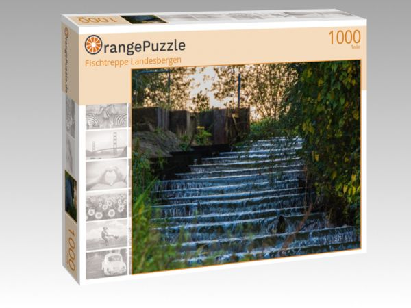 "Puzzle Motiv ""Fischtreppe Landesbergen"" - Puzzle-Schachtel zu 1000 Teile Puzzle"