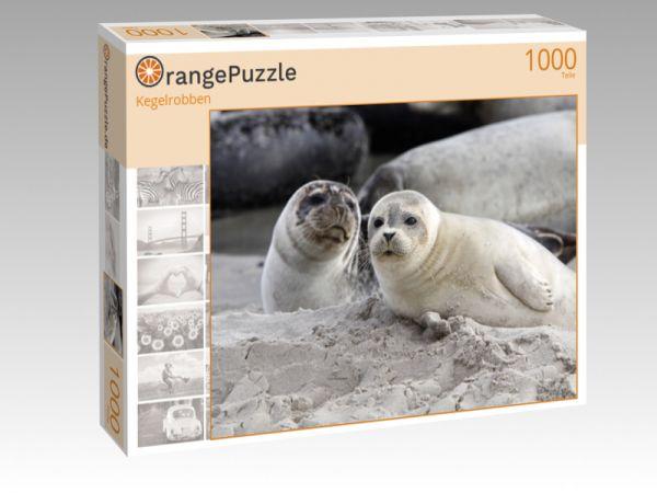 """Puzzle Motiv """"Kegelrobben"""" - Puzzle-Schachtel zu 1000 Teile Puzzle"""