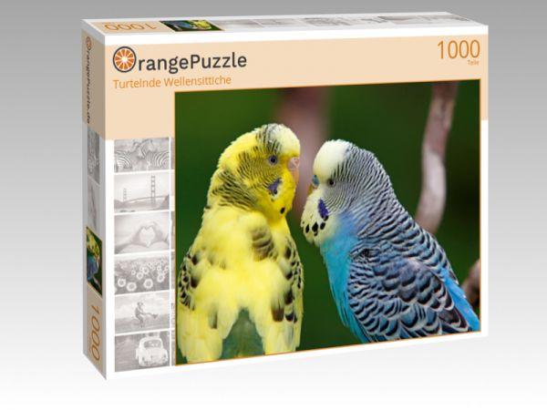"""Puzzle Motiv """"Turtelnde Wellensittiche"""" - Puzzle-Schachtel zu 1000 Teile Puzzle"""
