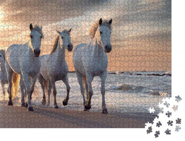 """Puzzle-Motiv """"Eine Herde weißer Pferde, die durch das Wasser laufen"""" - Puzzle-Schachtel zu 1000 Teile Puzzle"""