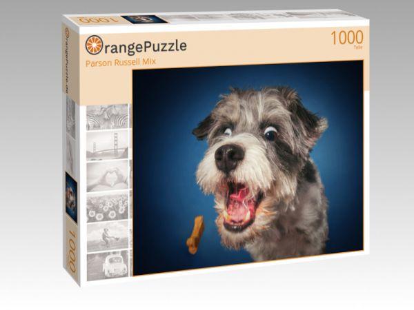 """Puzzle Motiv """"Parson Russell Mix"""" - Puzzle-Schachtel zu 1000 Teile Puzzle"""