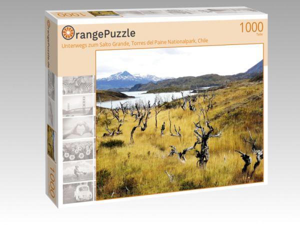 "Puzzle Motiv ""Unterwegs zum Salto Grande, Torres del Paine Nationalpark, Chile"" - Puzzle-Schachtel zu 1000 Teile Puzzle"