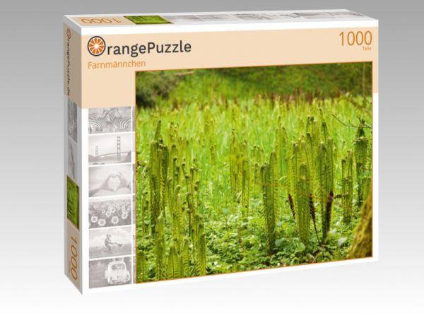 "Puzzle Motiv ""Farnmännchen"" - Puzzle-Schachtel zu 1000 Teile Puzzle"