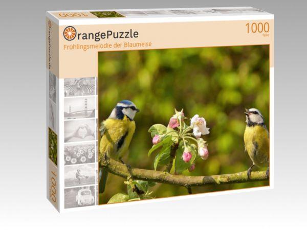 """Puzzle Motiv """"Frühlingsmelodie der Blaumeise"""" - Puzzle-Schachtel zu 1000 Teile Puzzle"""
