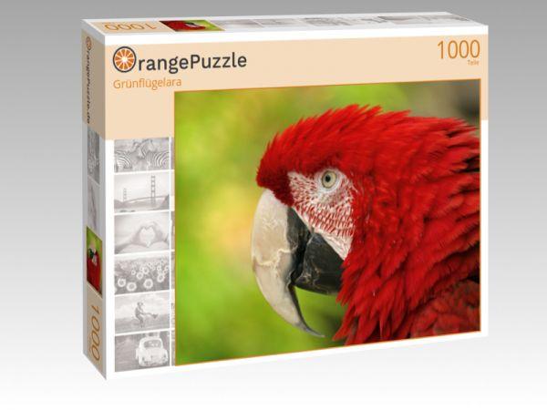"""Puzzle Motiv """"Grünflügelara"""" - Puzzle-Schachtel zu 1000 Teile Puzzle"""