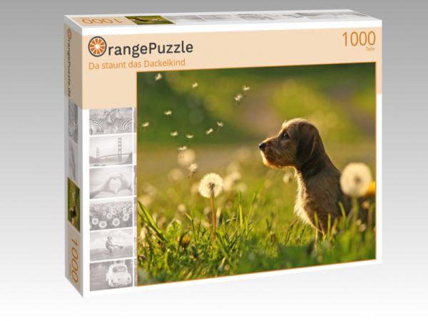 """Puzzle Motiv """"Da staunt das Dackelkind"""" - Puzzle-Schachtel zu 1000 Teile Puzzle"""