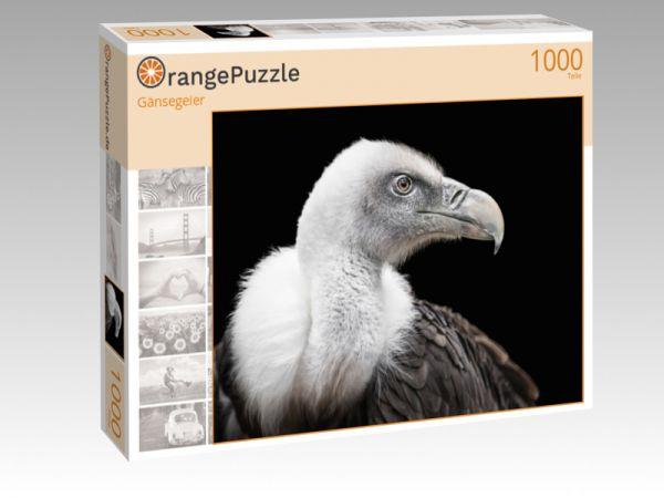 "Puzzle Motiv ""Gänsegeier"" - Puzzle-Schachtel zu 1000 Teile Puzzle"