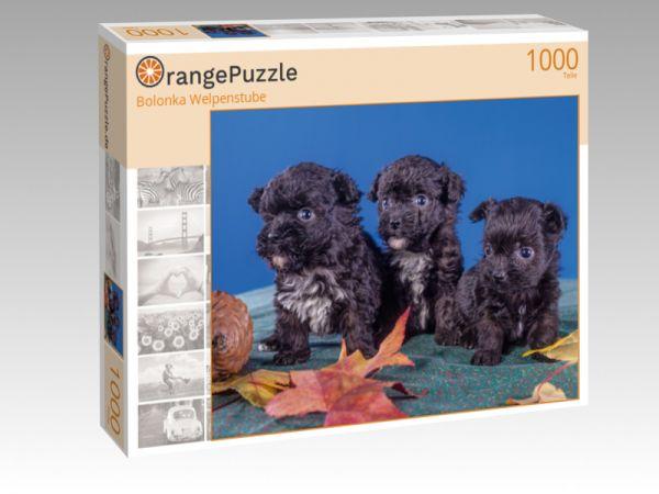 "Puzzle Motiv ""Bolonka Welpenstube"" - Puzzle-Schachtel zu 1000 Teile Puzzle"