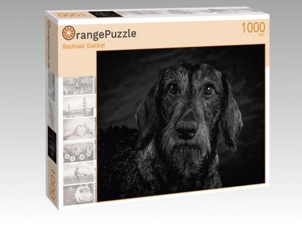 """Puzzle Motiv """"Rauhaar Dackel"""" - Puzzle-Schachtel zu 1000 Teile Puzzle"""
