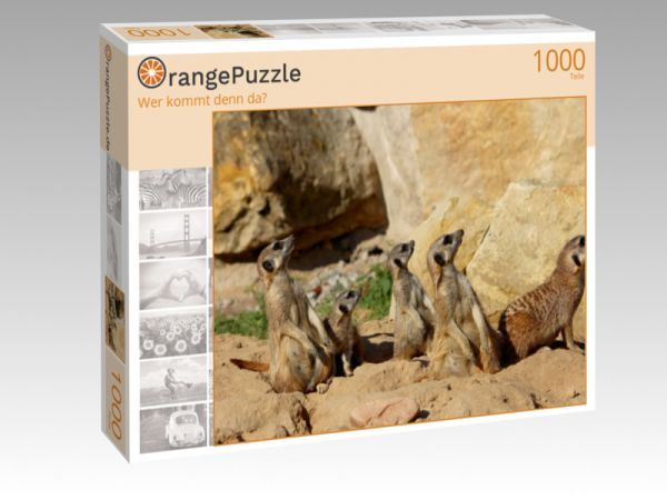 """Puzzle Motiv """"Wer kommt denn da?"""" - Puzzle-Schachtel zu 1000 Teile Puzzle"""