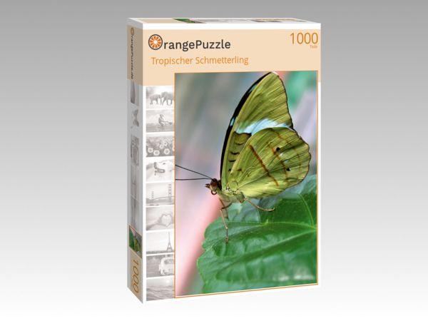 """Puzzle Motiv """"Tropischer Schmetterling"""" - Puzzle-Schachtel zu 1000 Teile Puzzle"""