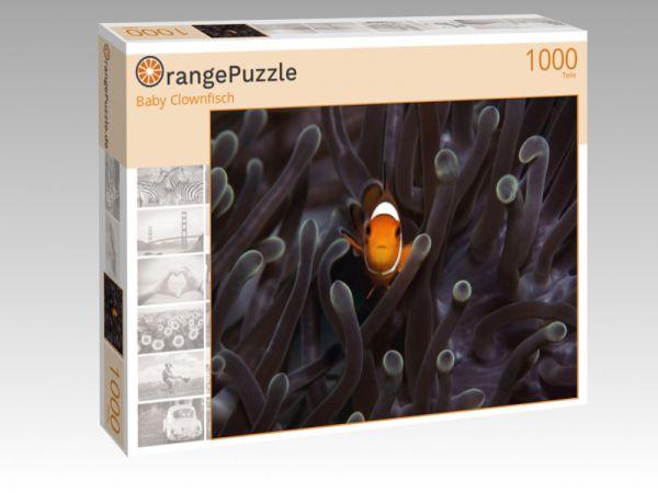 """Puzzle Motiv """"Baby Clownfisch"""" - Puzzle-Schachtel zu 1000 Teile Puzzle"""