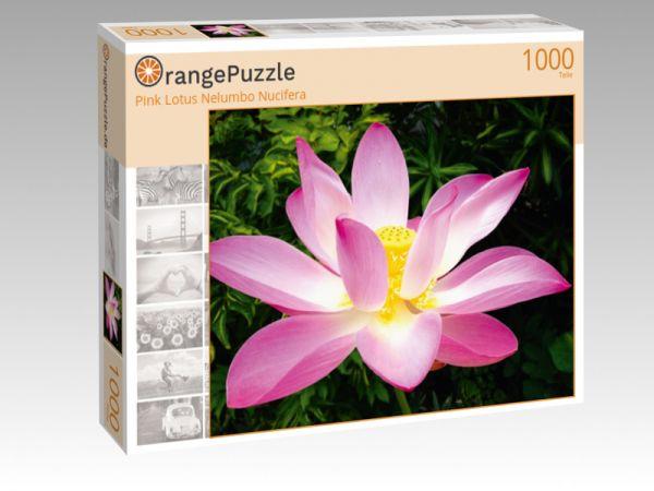 "Puzzle Motiv ""Pink Lotus Nelumbo Nucifera"" - Puzzle-Schachtel zu 1000 Teile Puzzle"