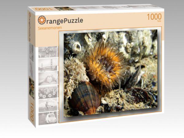 """Puzzle Motiv """"Seeanemonen"""" - Puzzle-Schachtel zu 1000 Teile Puzzle"""