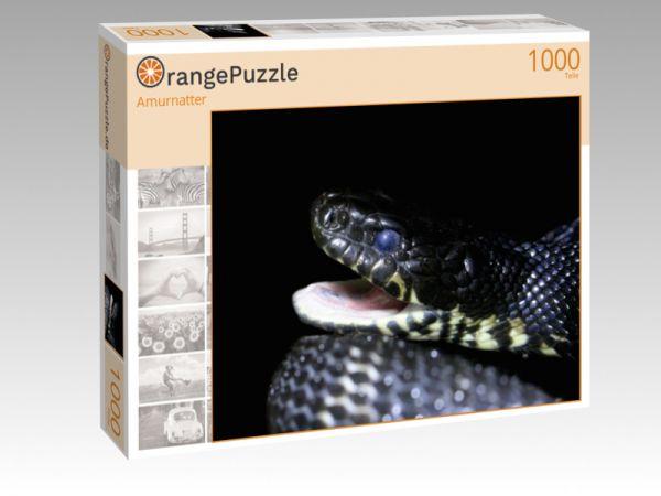 """Puzzle Motiv """"Amurnatter"""" - Puzzle-Schachtel zu 1000 Teile Puzzle"""
