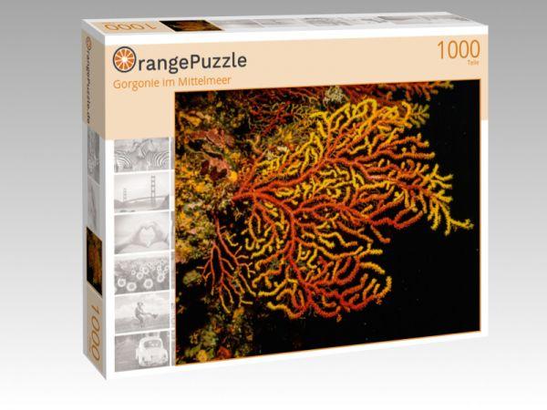 """Puzzle Motiv """"Gorgonie im Mittelmeer"""" - Puzzle-Schachtel zu 1000 Teile Puzzle"""
