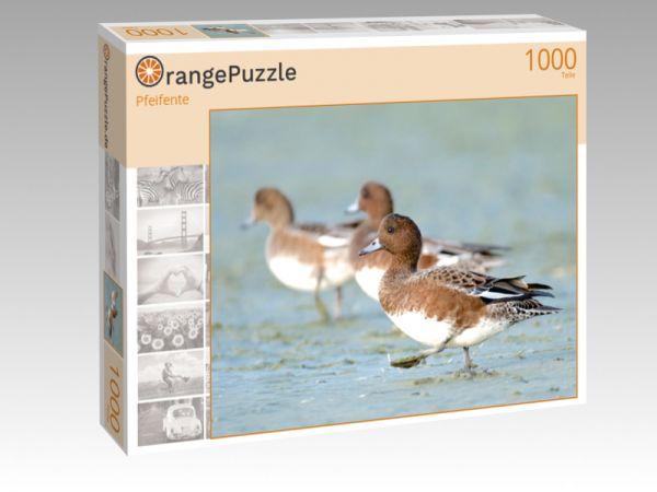 """Puzzle Motiv """"Pfeifente"""" - Puzzle-Schachtel zu 1000 Teile Puzzle"""