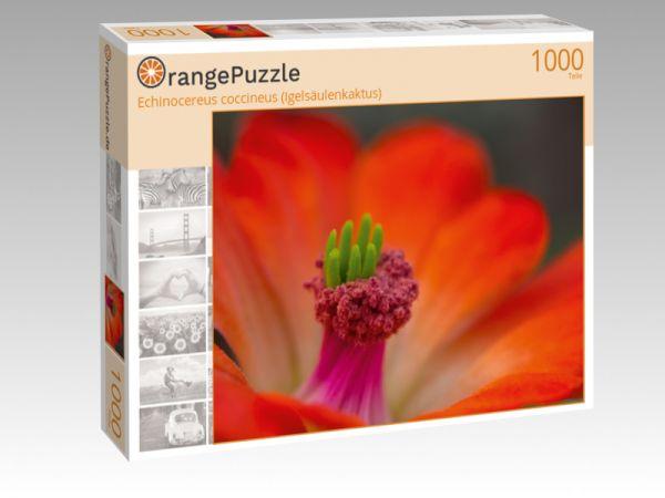 "Puzzle Motiv ""Echinocereus coccineus (Igelsäulenkaktus)"" - Puzzle-Schachtel zu 1000 Teile Puzzle"