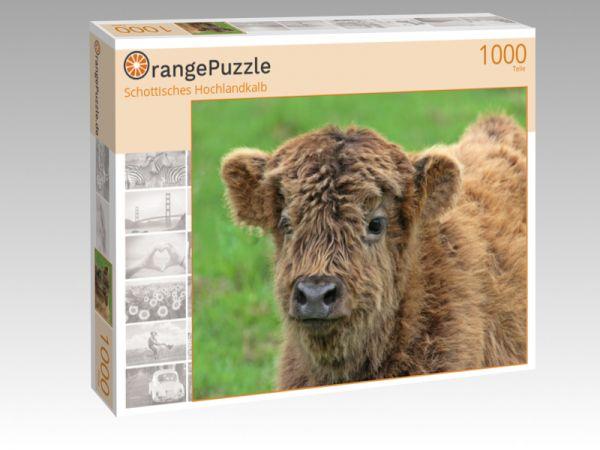 """Puzzle Motiv """"Schottisches Hochlandkalb"""" - Puzzle-Schachtel zu 1000 Teile Puzzle"""