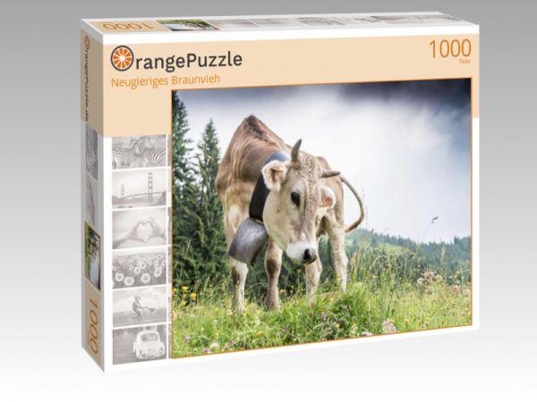 """Puzzle Motiv """"Neugieriges Braunvieh"""" - Puzzle-Schachtel zu 1000 Teile Puzzle"""