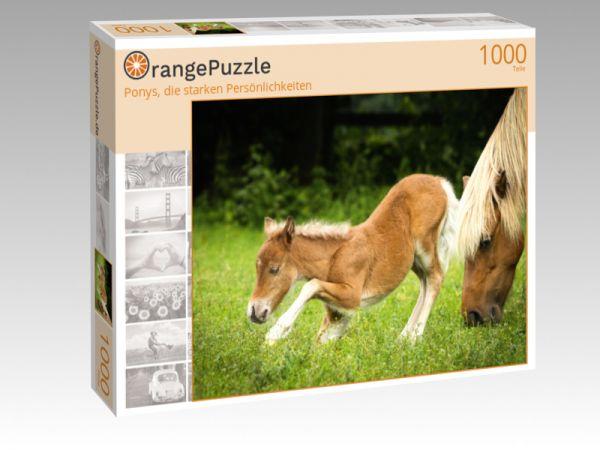 """Puzzle Motiv """"Ponys, die starken Persönlichkeiten"""" - Puzzle-Schachtel zu 1000 Teile Puzzle"""