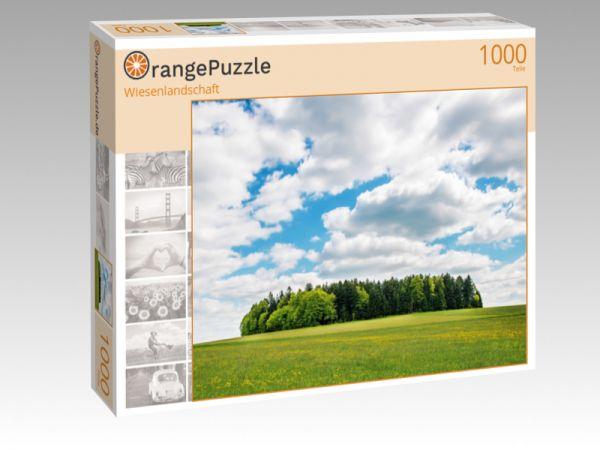 """Puzzle Motiv """"Wiesenlandschaft"""" - Puzzle-Schachtel zu 1000 Teile Puzzle"""