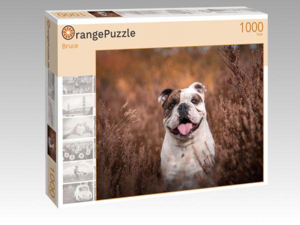 """Puzzle Motiv """"Bruce"""" - Puzzle-Schachtel zu 1000 Teile Puzzle"""