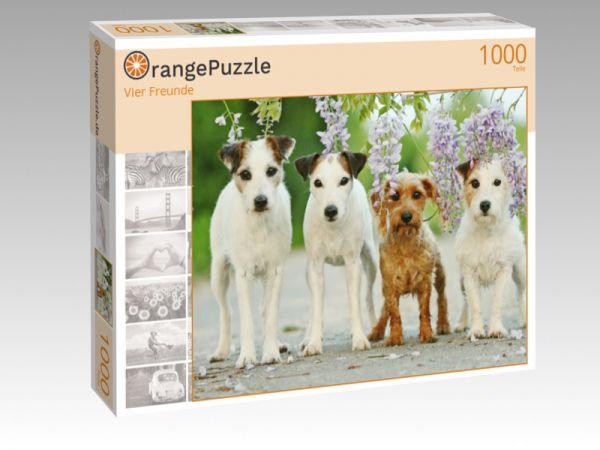 """Puzzle Motiv """"Vier Freunde"""" - Puzzle-Schachtel zu 1000 Teile Puzzle"""