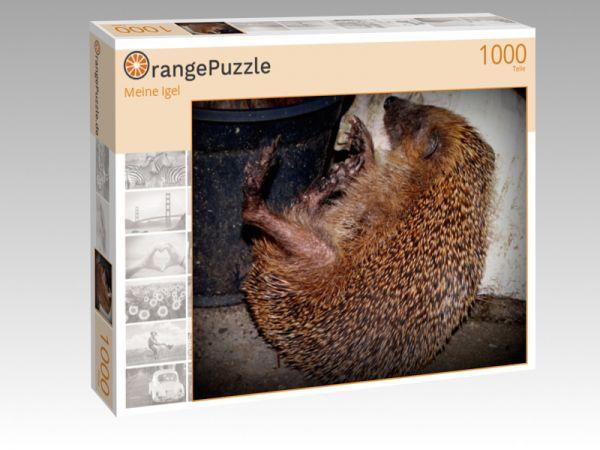 """Puzzle Motiv """"""""Meine Igel"""""""" - Puzzle-Schachtel zu 1000 Teile Puzzle"""