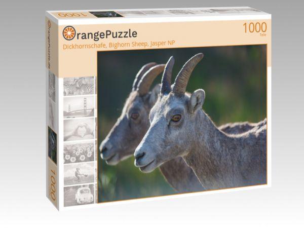 """Puzzle Motiv """"Dickhornschafe, Bighorn Sheep, Jasper NP"""" - Puzzle-Schachtel zu 1000 Teile Puzzle"""