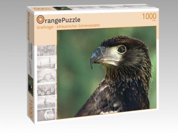 """Puzzle Motiv """"Greifvögel - Afrikanischer Schreiseeadler"""" - Puzzle-Schachtel zu 1000 Teile Puzzle"""