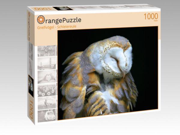 """Puzzle Motiv """"Greifvögel - Schleiereule"""" - Puzzle-Schachtel zu 1000 Teile Puzzle"""